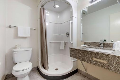 Rodeway Inn Winston Salem Route 52 - Winston-Salem - Bathroom