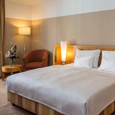 Falkensteiner Hotel Grand Medspa Marienbad - Mariánské Lázně - Bedroom