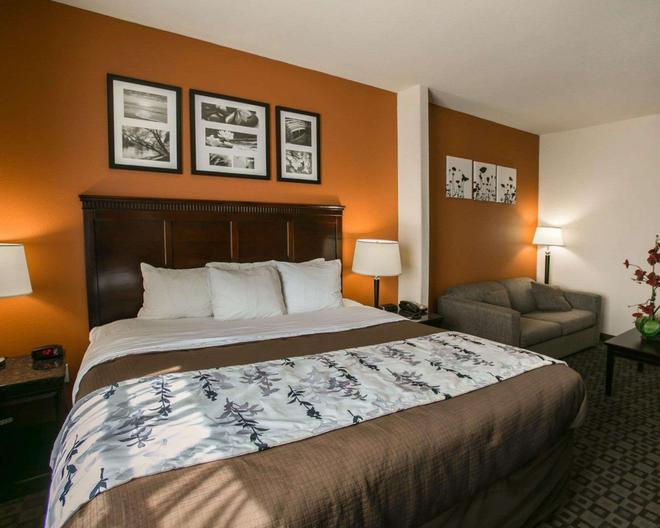 西北高速 290 斯利普套房酒店 - 休士頓 - 休斯頓 - 臥室