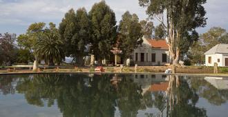 Rietfontein Ostrich Palace - Calitzdorp - Outdoor view