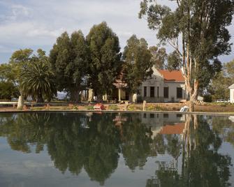 Rietfontein Ostrich Palace - Calitzdorp