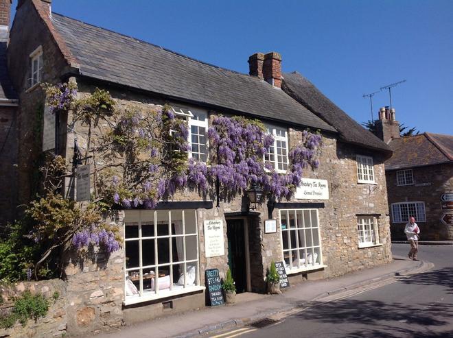 Abbotsbury Tea Rooms - Weymouth - Toà nhà