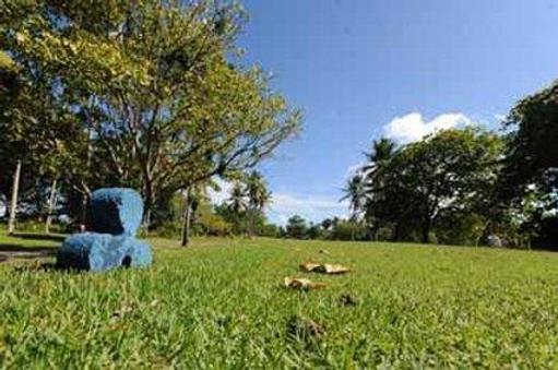Blue Jacktar - Puerto Plata - Outdoor view