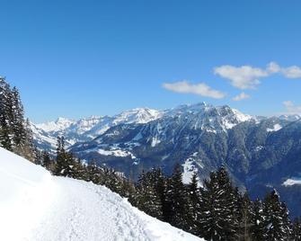 Alpine Classic Hotel - Leysin - Buiten zicht