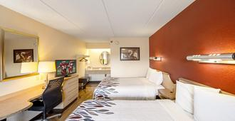 Red Roof Inn Greensboro Coliseum - Greensboro - Bedroom
