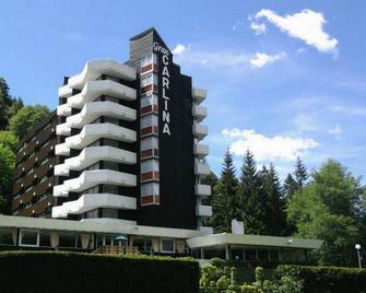 Hotel Gran Carlina - Мон-Дор - Здание
