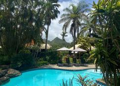 Ikurangi Eco Retreat - Rarotonga - Piscina