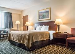 Quality Inn & Suites Palm Island Indoor Waterpark - Batavia - Makuuhuone