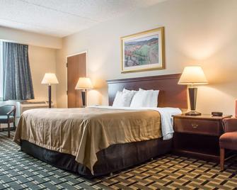Quality Inn & Suites Palm Island Indoor Waterpark - Batavia - Bedroom