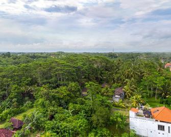 Wahyu Dewata Villa - Gianyar - Näkymät ulkona