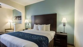 Comfort Suites New Orleans East - ניו אורלינס - חדר שינה