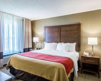 Comfort Inn Lexington - Lexington - Спальня