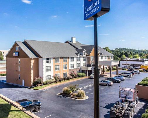 Comfort Inn and Suites Smyrna - Smyrna - Building