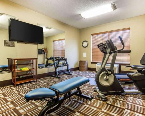 Comfort Inn and Suites Smyrna - Smyrna - Gym