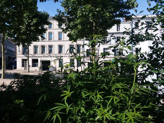 布雷謝最佳西方酒店 - 尼歐爾 - 尼沃特 - 建築