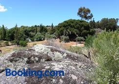 Tapada da Rabela - Reserva Natural - Marvão - Outdoors view