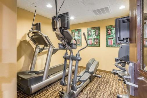 Comfort Inn & Suites - Dalton - Gym