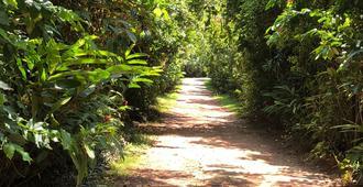 The Villa Green Inn - Negombo