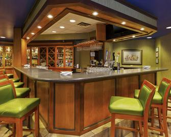 DoubleTree by Hilton Holland - Holland - Бар