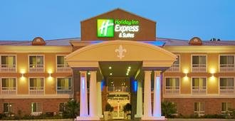 Holiday Inn Express & Suites Alexandria - Alexandria