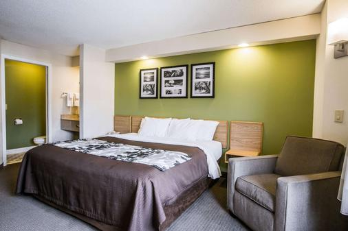 Rodeway Inn at Six Flags - Austell - Bedroom