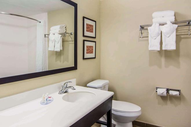 Comfort Inn Atlanta Downtown South - Ατλάντα - Μπάνιο