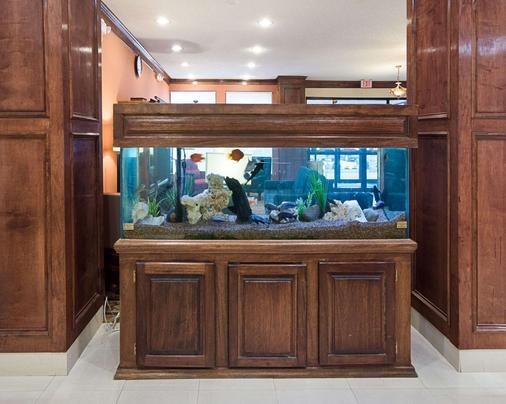 Comfort Inn & Suites Houston West-Katy - Katy - Front desk