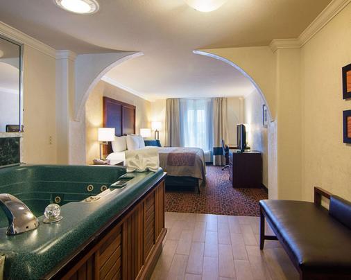 Comfort Inn & Suites Houston West-Katy - Katy - Bedroom