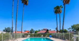 Super 8 by Wyndham Bakersfield/Central - Bakersfield - Piscina