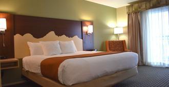 Best Western Driftwood Inn - Idaho Falls - Bedroom