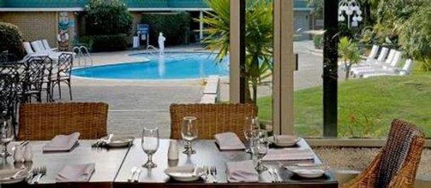 卓越羅托魯阿酒店及會議中心 - 羅托魯瓦 - 羅托魯瓦 - 游泳池