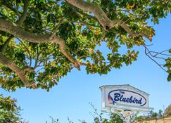 Bluebird Inn - Cambria - Outdoor view