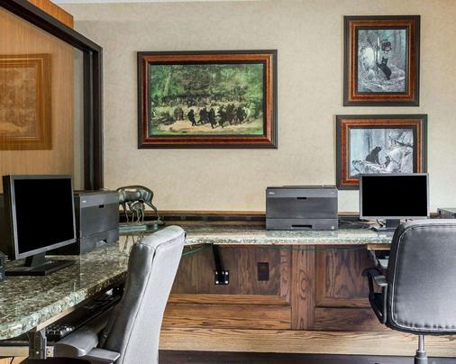 Comfort Suites Boone - University Area - Boone - Business center