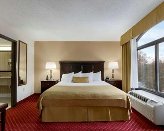Wingate by Wyndham Charlotte Airport South/ I-77 Tyvola Road - Charlotte - Habitación