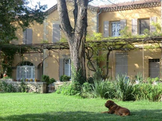 Villa Des Figuiers - Remoulins - Building