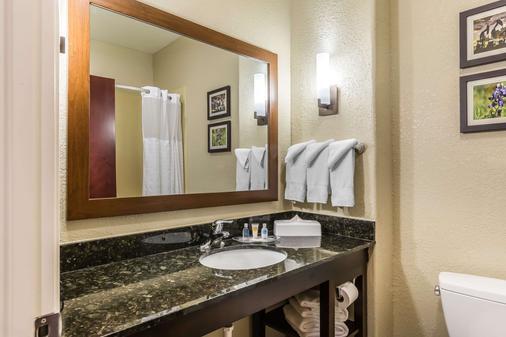 Comfort Suites Houston IAH Airport - Beltway 8 - Houston - Bathroom