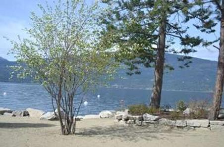 Outback Lakeside Vacation Homes - Vernon - Beach