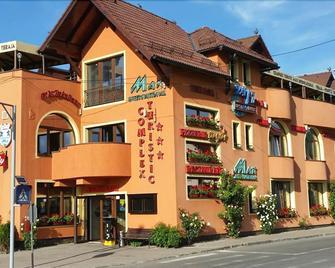 Complex Turistic Max International - Rosenau - Gebäude