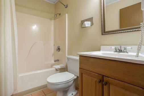 Rodeway Inn - Asheville - Μπάνιο