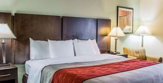 Quality Inn Raleigh Downtown - Raleigh - Quarto
