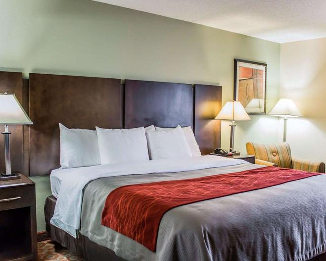Quality Inn Raleigh Downtown - Raleigh - Bedroom