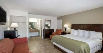 Days Inn by Wyndham St. Petersburg / Tampa Bay Area - St. Petersburg - Phòng ngủ
