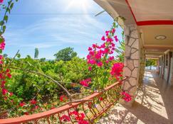 Rollanda Hotel Restaurant - Jacmel - Balcó