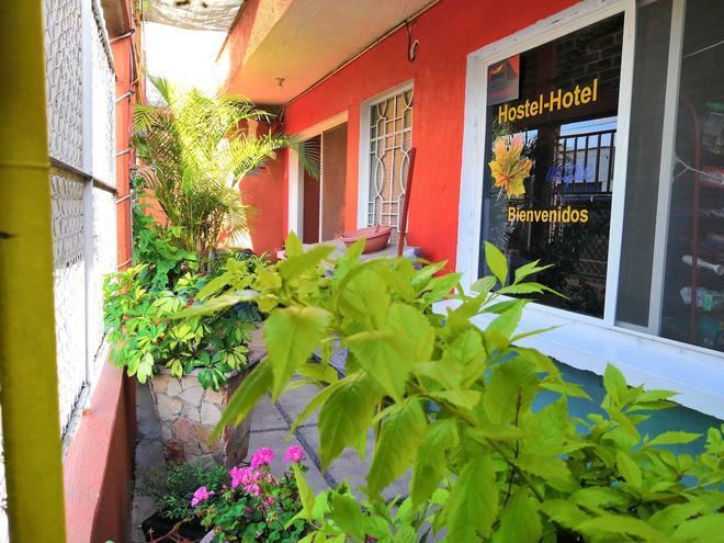 Hostal Maple - Santiago de Querétaro - Outdoors view
