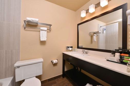 Quality Inn Hotel, Kent - Seattle - Kent - Bathroom