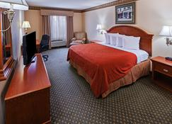 Country Inn & Suites by Radisson, Amarillo, TX - Amarillo - Quarto