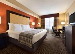 Country Inn & Suites by Radisson Evansville, IN - Evansville - Bedroom