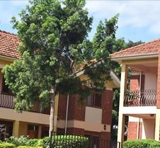 Eden Lawns Uganda Limited
