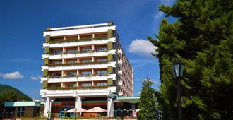 Hotel Carpati - Baia Mare