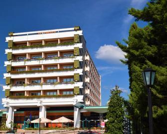 Hotel Carpati - Baia Mare - Building